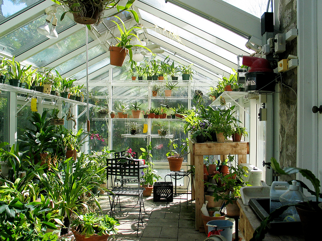 Irregular greenhouse