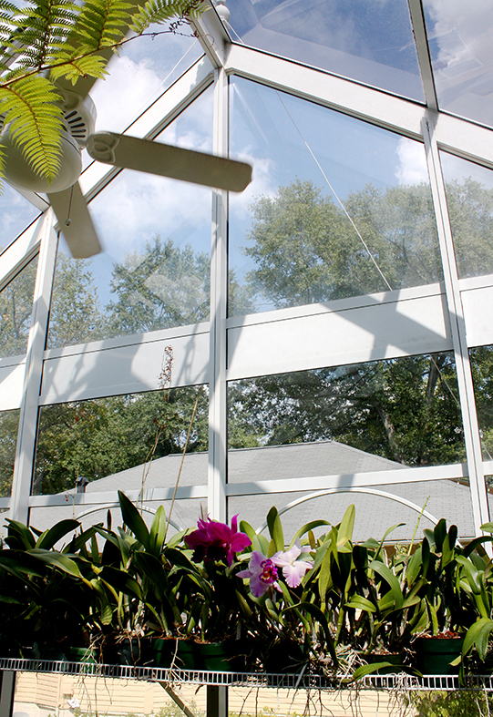 Straight eave, double pitch orchid greenhouse with bull nose, partial lean-to roof section, ridge cresting, finials, and grids.