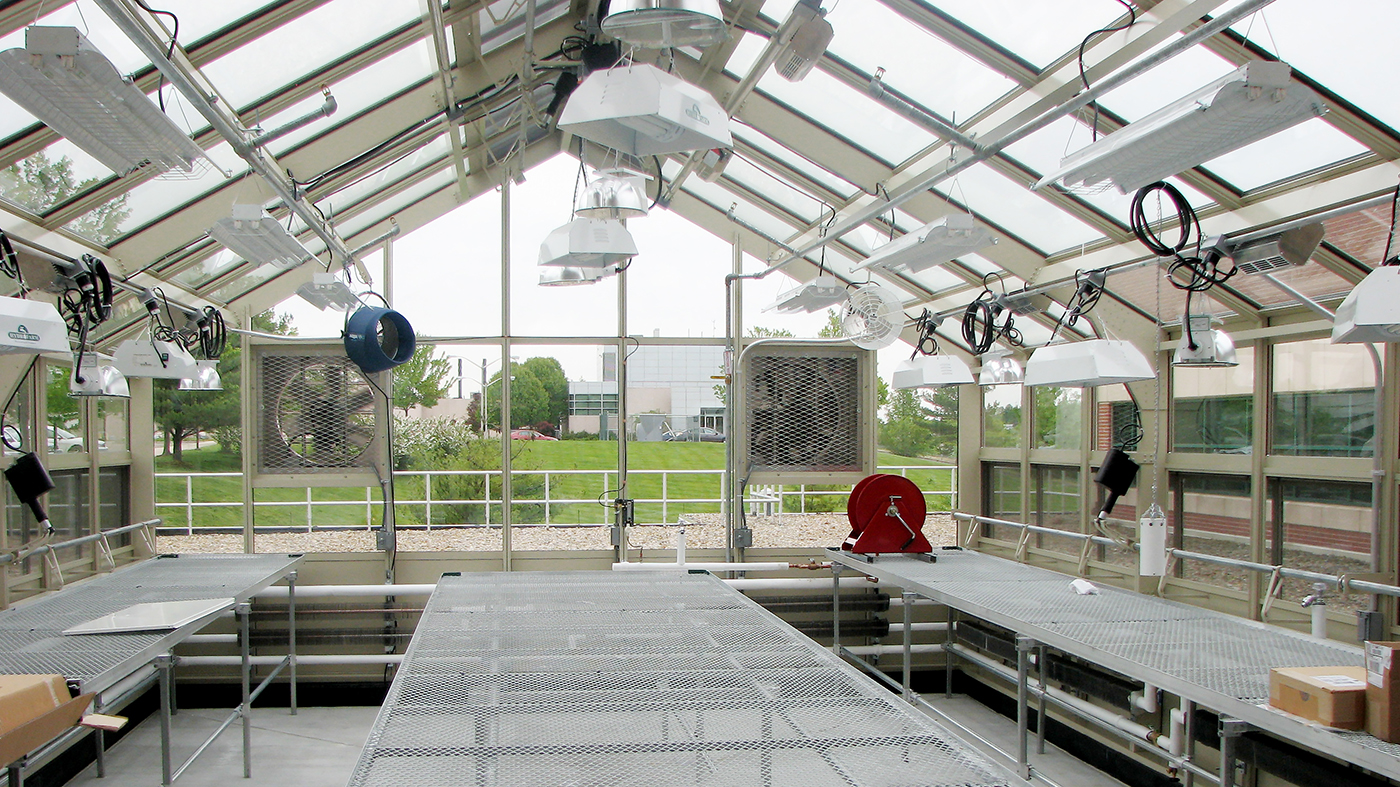 Straight eave, double pitch greenhouse with connecting walkway, ridge vents, eave vents, terrace door, environmental control system, benches, base panels, and gutter.