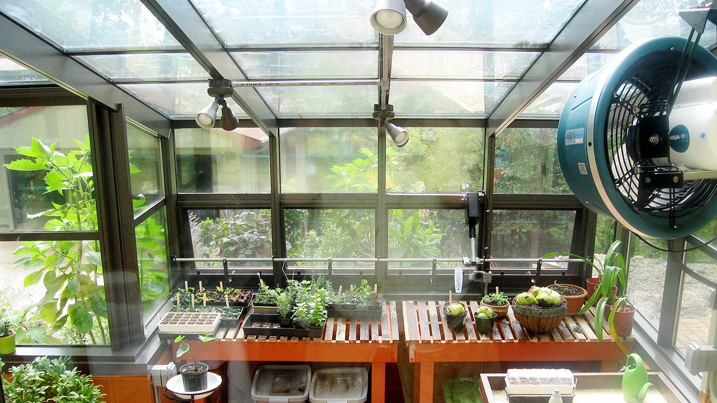 Irregular straight eave lean-to greenhouse with ridge vents, eave vents and French doors. The interior of the greenhouse features circulating fans and a humidifier. The gardeners raise a variety of house plants year round inside the greenhouse.