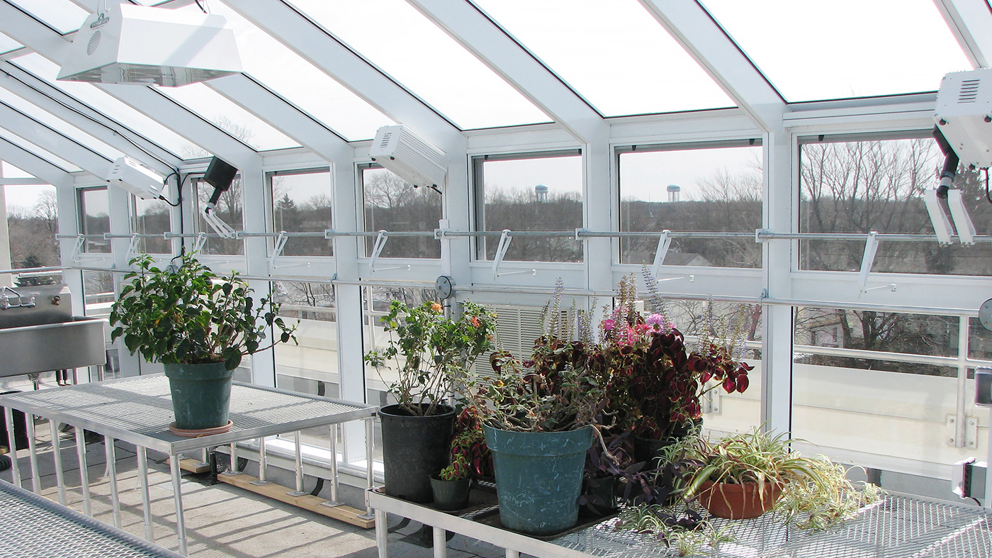 Straight eave double pitch greenhouse with two gable ends including fixed benches, eave and ridge vents, grow lights, and commercial door with panic bar.
