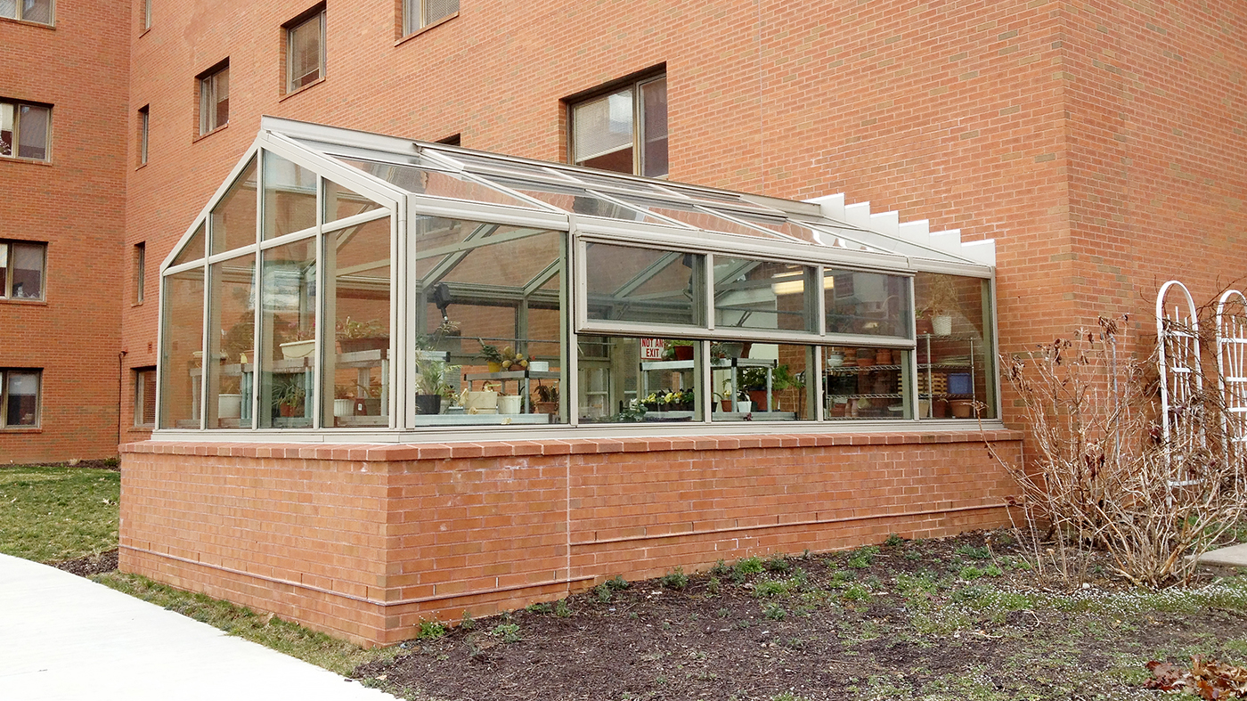 Straight eave double pitch greenhouse with one gable end and eave and ridge vents.