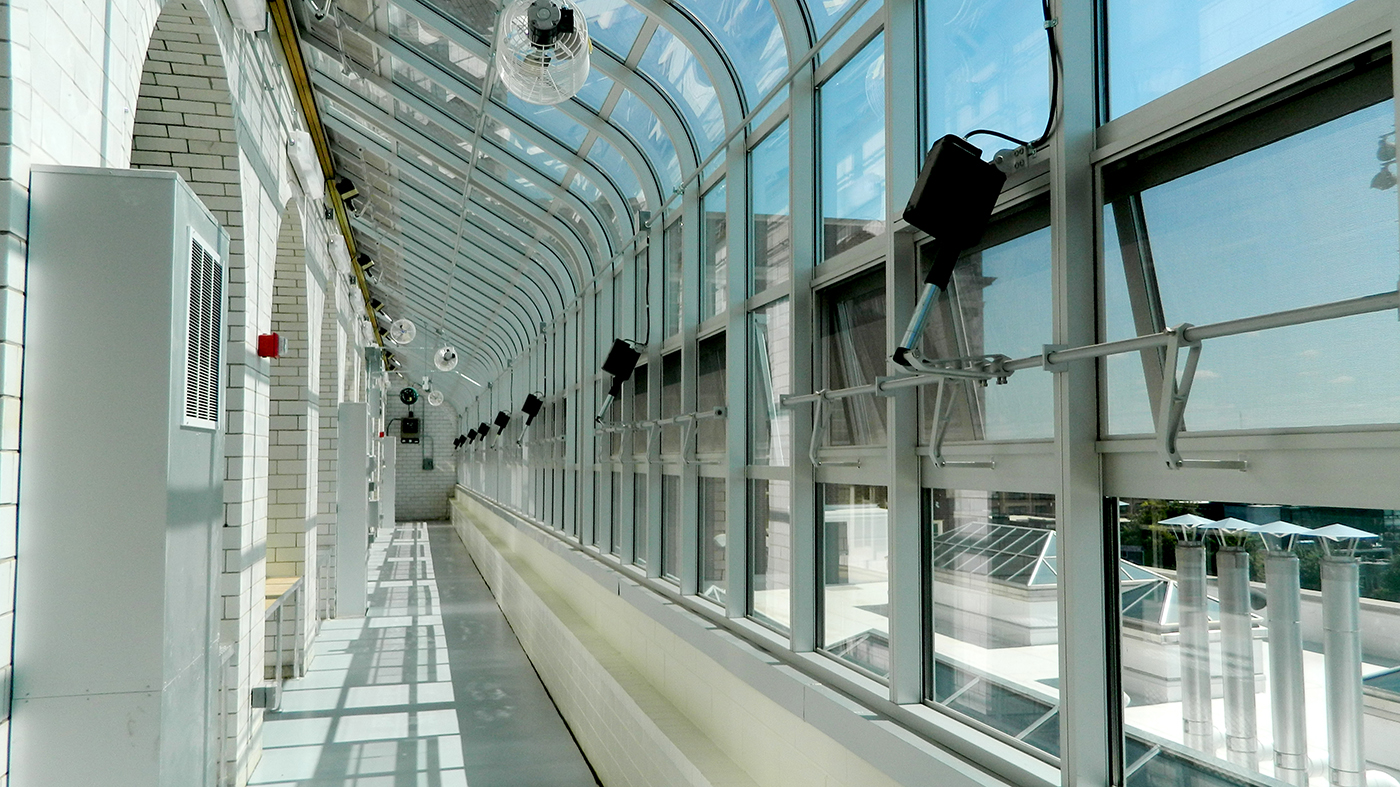 Curved-eave lean to greenhouse