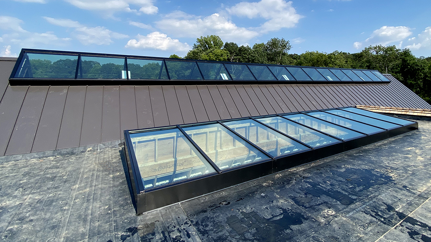 Straight eave double pitch and single slope skylight