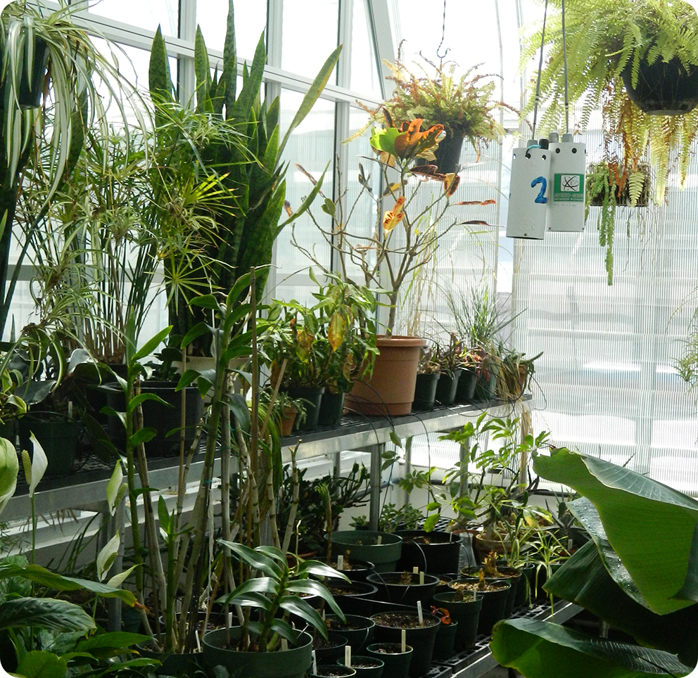 Interior | Research Greenhouse | Franklin and Marshal College