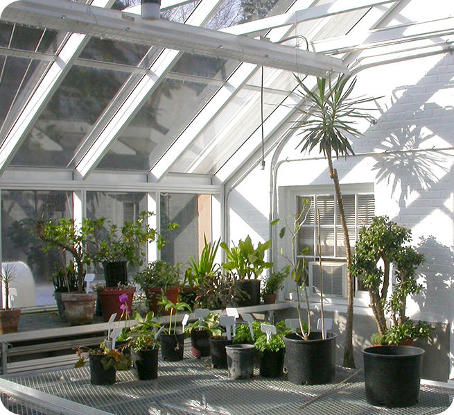 Interior | Research Greenhouses | Yale