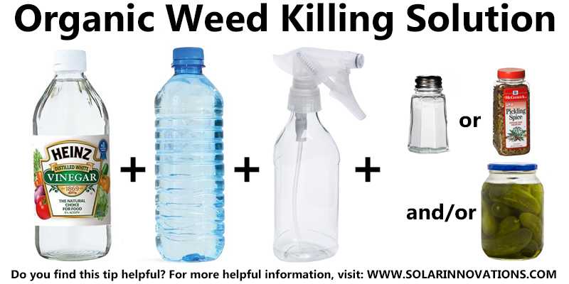 Organic Weed Solution