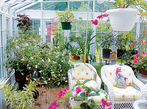 Accessory Packages Year round plants