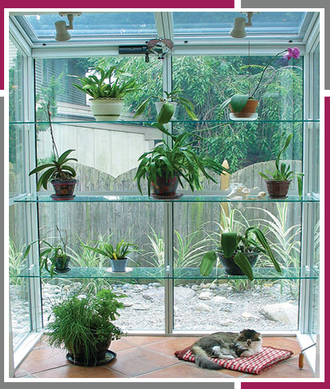 Garden-Windows-Feature1