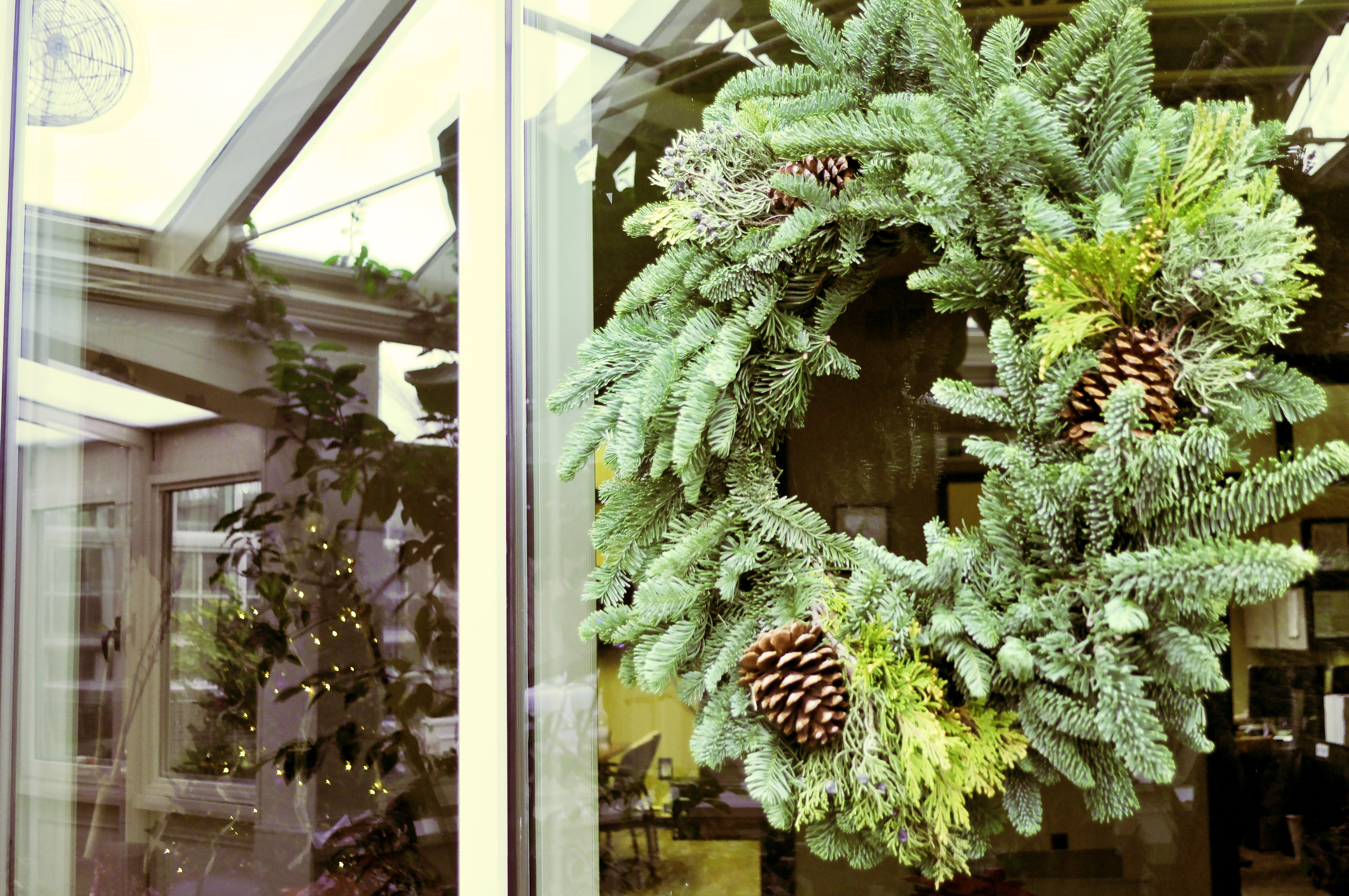 How to grow your own wreaths