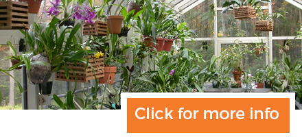 Specialty Greenhouse